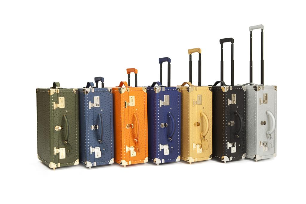 elite luxury accessories suitcases set